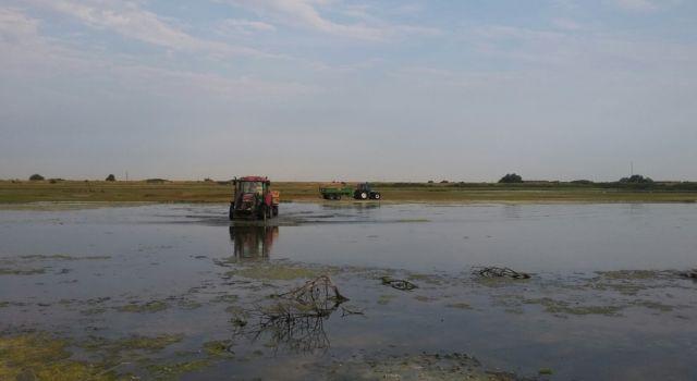 Slikken van Bommenede foto Staatsbosbeheer Jos Kint