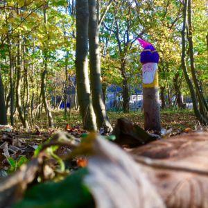 Pietenpad boswachterij Westerschouwen