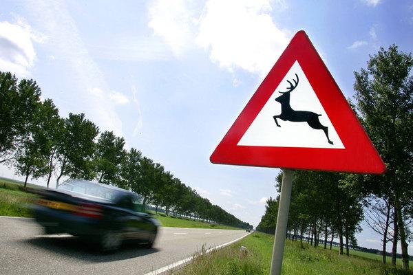 (Bron: autoweek.nl)