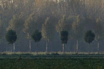 polderNDB
