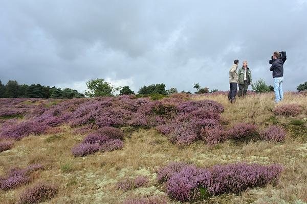 Pauline Arends, Joris Barske en cameraman Remco Kikkert op het Zuidhijkerzand in augustus.