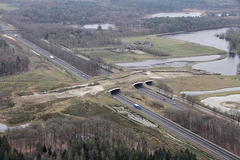 Ecoduct Dwingelderveld