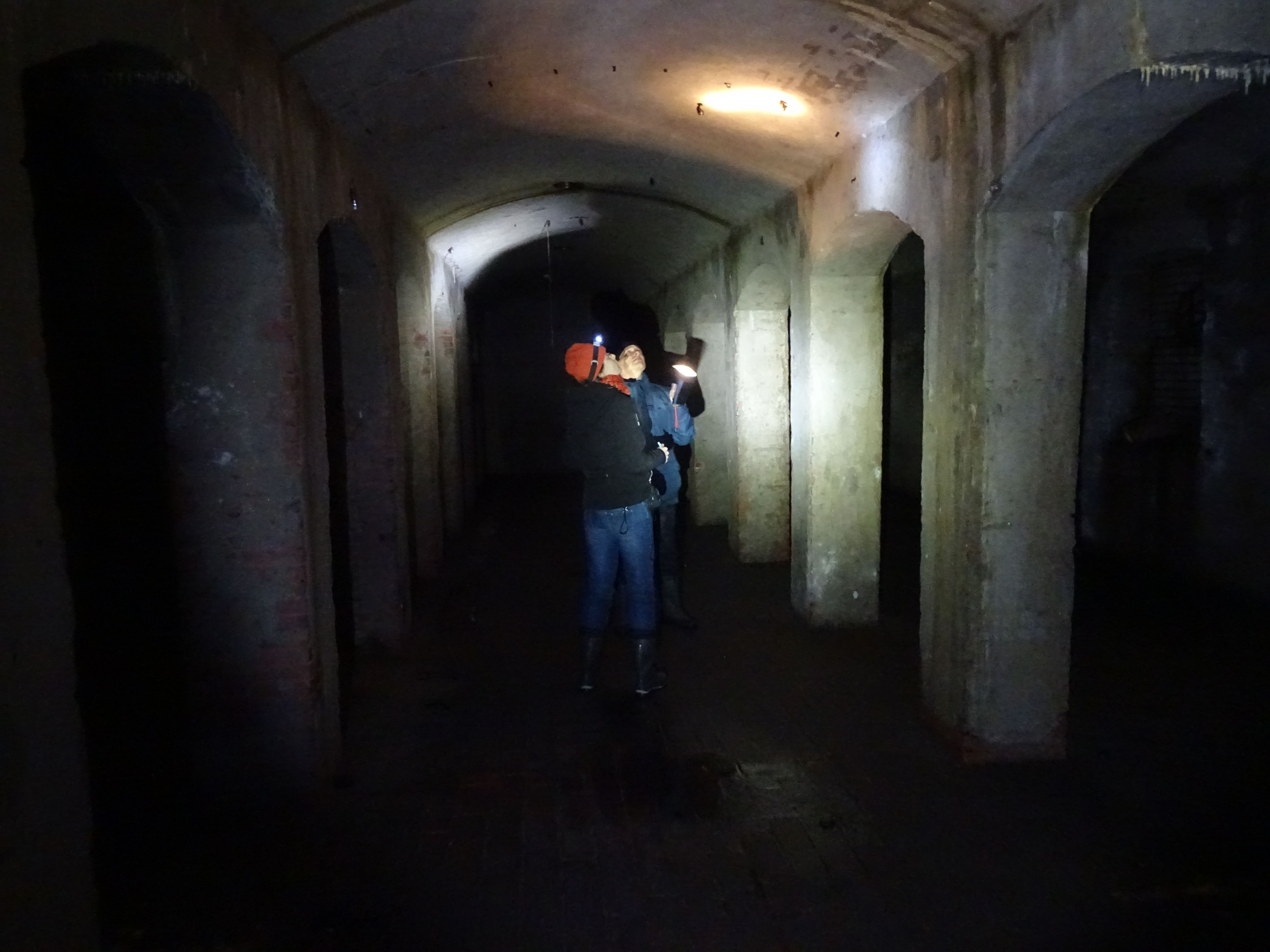 Op onderzoek in de aardappelkelder van Kamp Westerbork