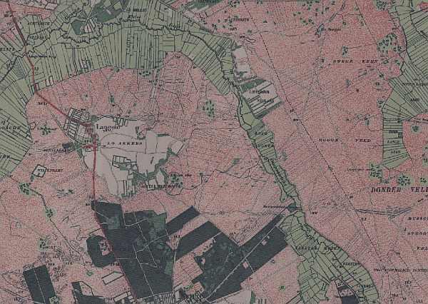 Het nog oneindige heidelandschap rond Norg in 1900. Ook de eerste aanleg van bossen op de stuifzanden is te zien.
