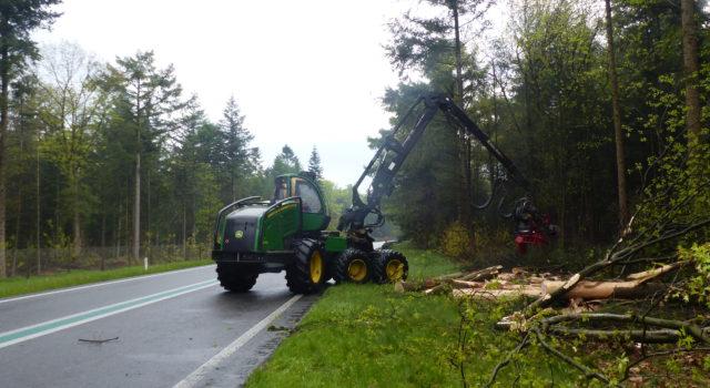 Bomen worden omgezaagd voor de verkeersveiligheid