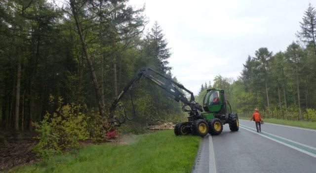 bomen worden weggehaald voor de veiligheid van de n34