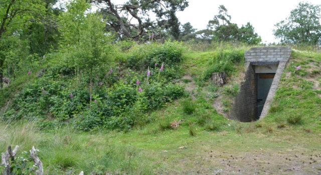 De Handgranaatbunker in het Strubben Kniphorstbosch