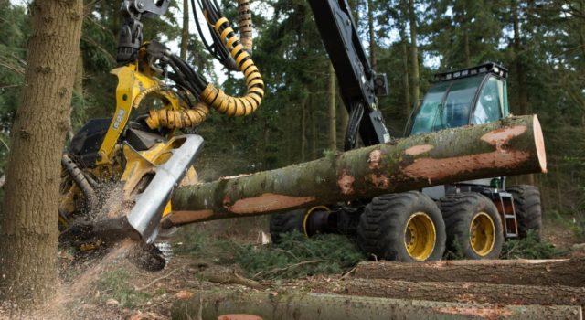 Harvester die een boomstam in stukken zaagt