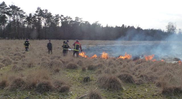 gecontroleerd heide branden
