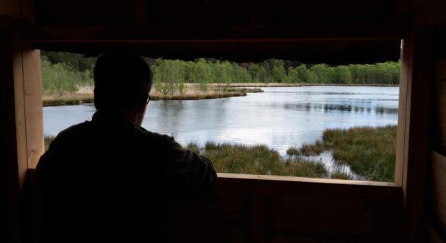 Het uitzicht vanuit de nieuwe vogelkijkhut aan de Stobbenplas