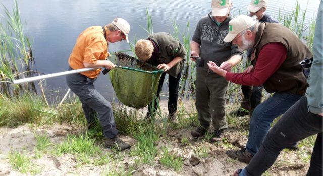 De 1250-soortendag in het Bargerveen leverde veel parels op