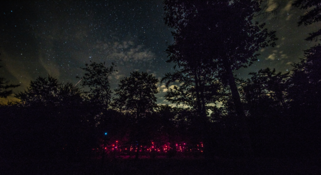 De Pixi in het donkere bos (foto By Knelis)