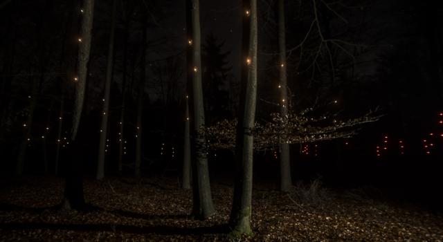 Met kleine lichtpulsjes wijzen de Pixies de weg (foto By Knelis)