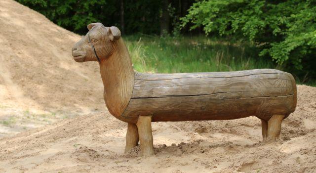 Het nieuwe zand maakt de poten van de schapen weer in proportie