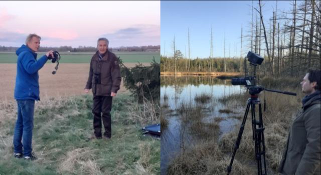Vroege Vogels op pad in het Hart van Drenthe