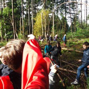 struinen door het bos
