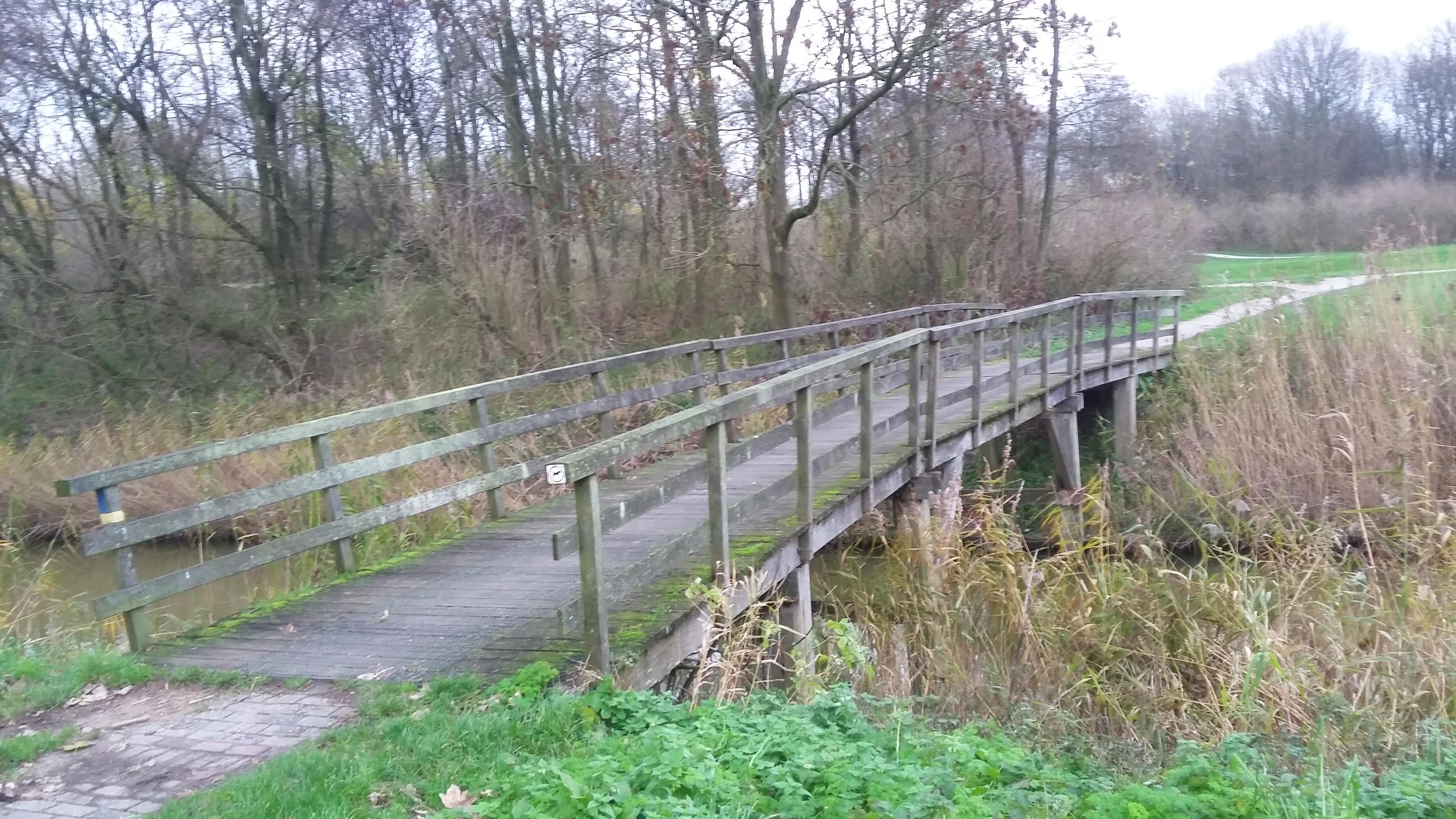 Oude Wisentbrug (2)