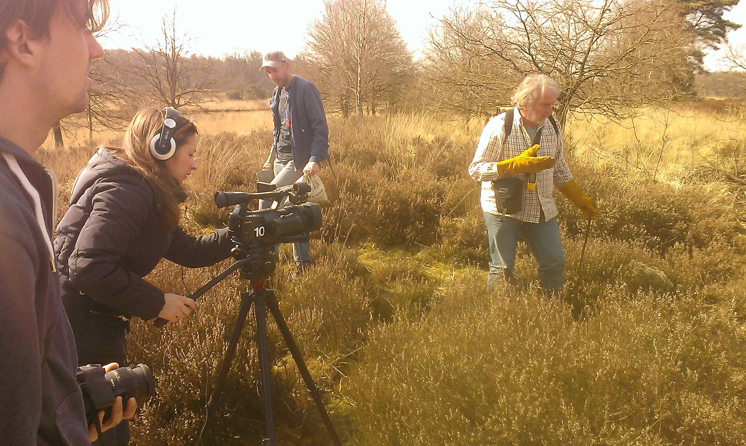 RTV Utrecht filmt de adders