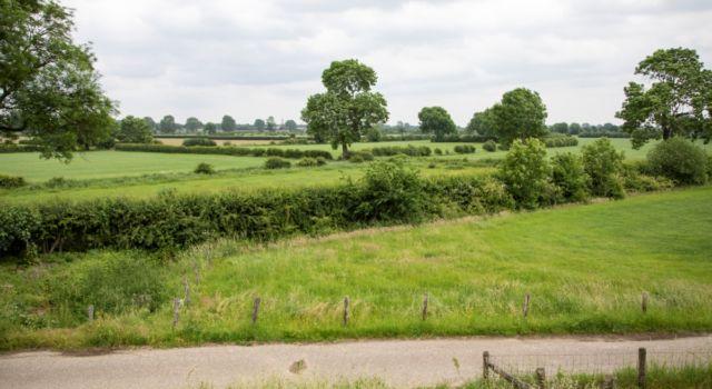 Cultuurhistorisch landschap Maasheggen