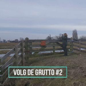 grutto - vlog #2