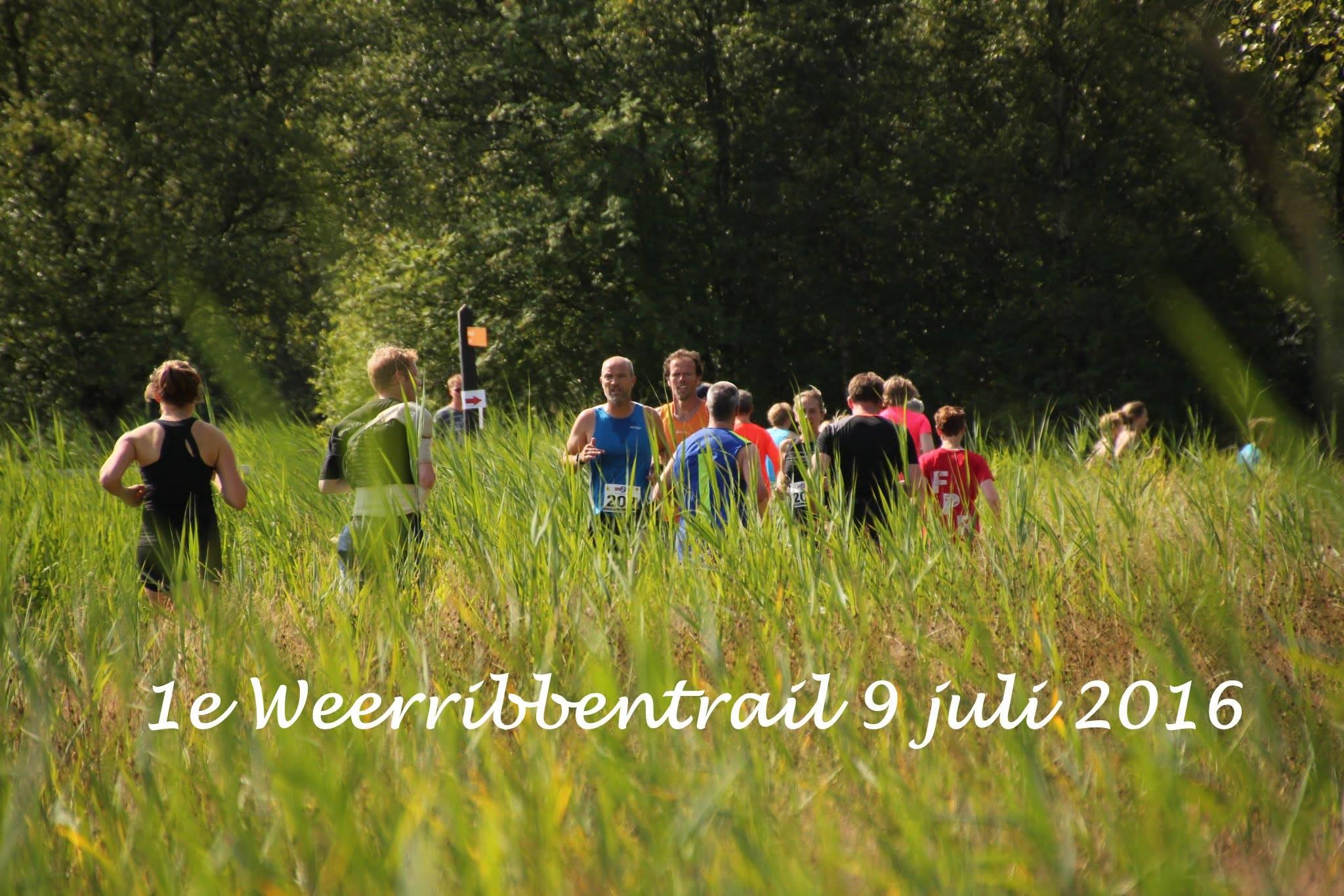 (C) Djurre van der Schaaf