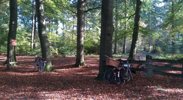 fietsen tegen hek