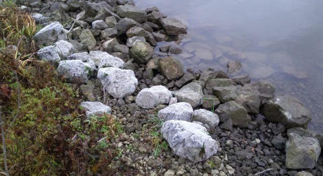 witte stenen