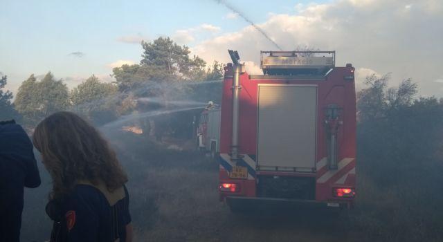 Brand in de natuur?