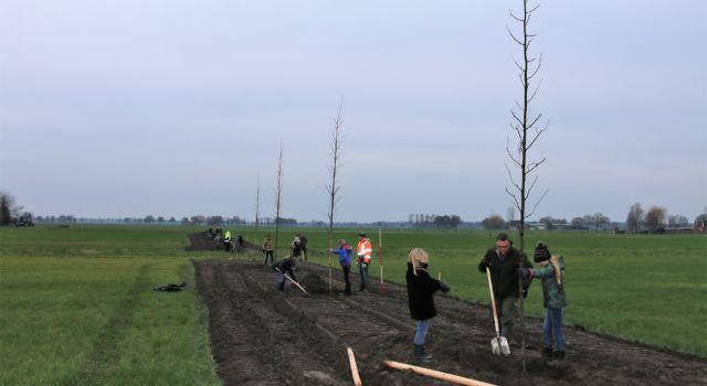 Bomen planten op de Zunasche Heide