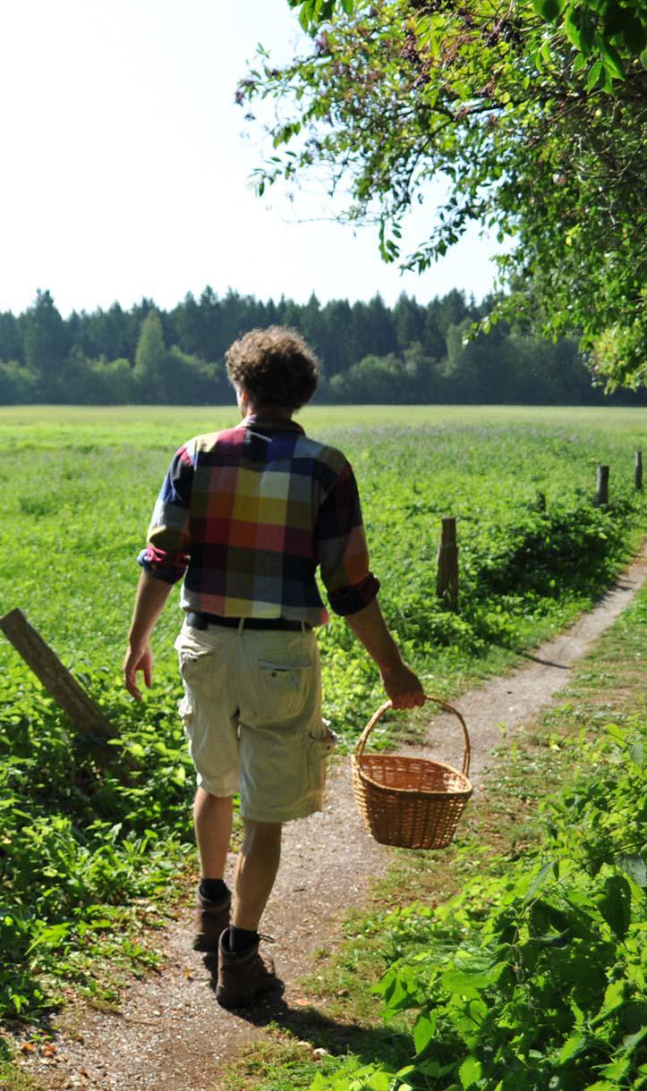 Wildplukker Michiel Bussink