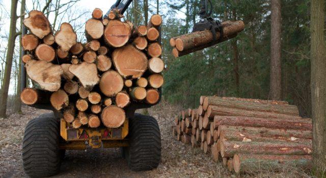 Uitrijder hout