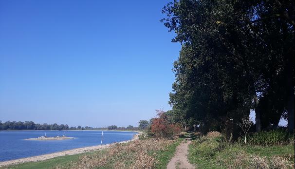 De Bisonbaai