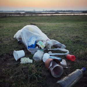 World Cleanup Day Millingerwaard