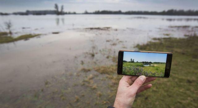 Hoogwater in de Gelderse Poort (foto: Werry Crone)