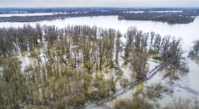 Overstroomde Millingerwaard