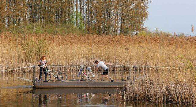 Trekpontje Rijnstrangen, foto: Twan Teunissen