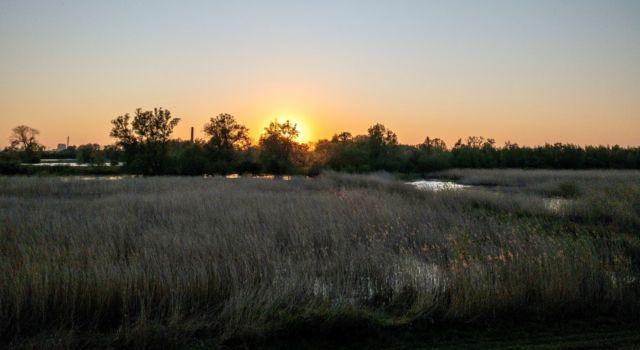 Oude Waal bij zonsondergang