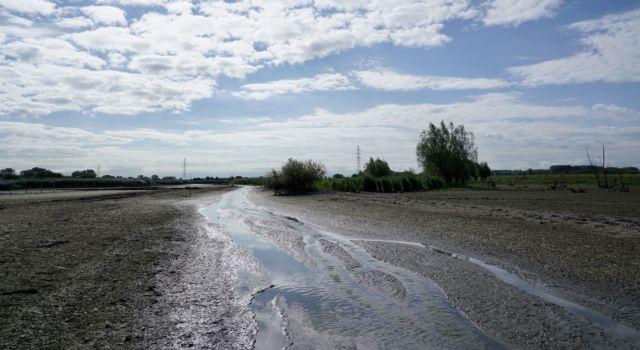 Droogval Rijnstrangen 2020