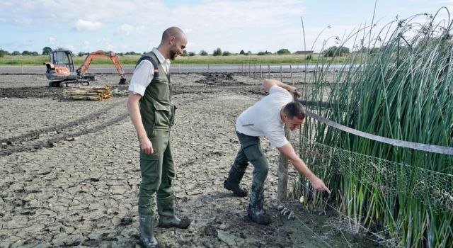Boswachters bij kooi met mattenbies