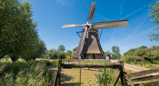 De Waardenburgse molen Foto: Marjolein den Hartog / kissmyarts