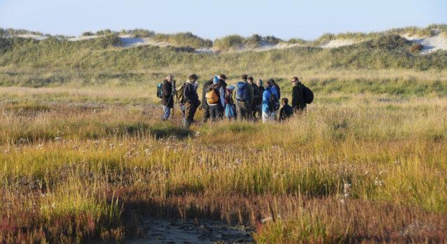 Met de Expeditie-gids loop je ook over de kwelder van Rottumeroog. Foto: Henk Postma.
