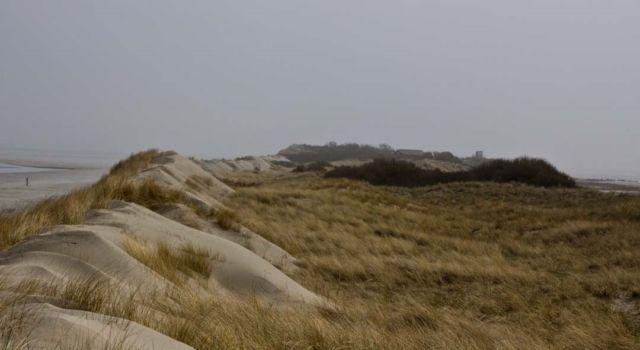 Stuifdijk Rottumerplaat