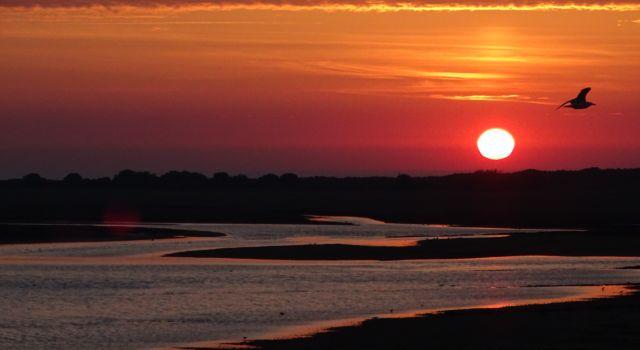 zonsondergang op Rottumerplaat mei 2018 (foto: Loes Kuiper)