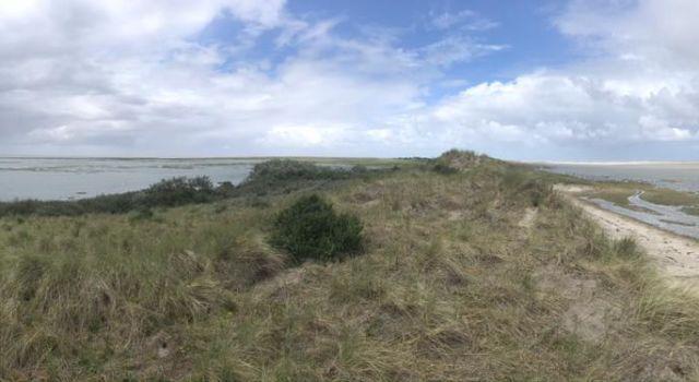 Even zaten we op een héél klein eiland. Het water stond tot aan de Stuifdijk.