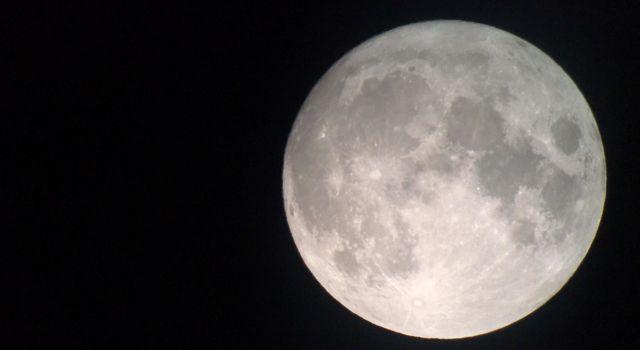 Eén dag voor volle maan.