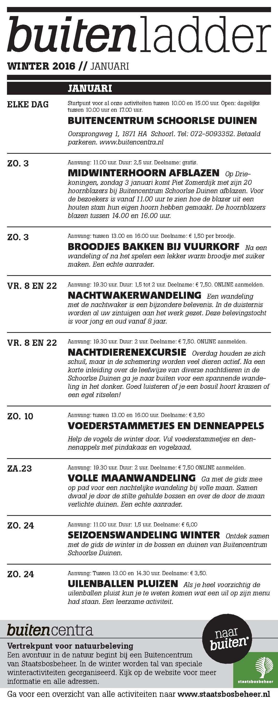 Buitenladder Januari 2016 100%