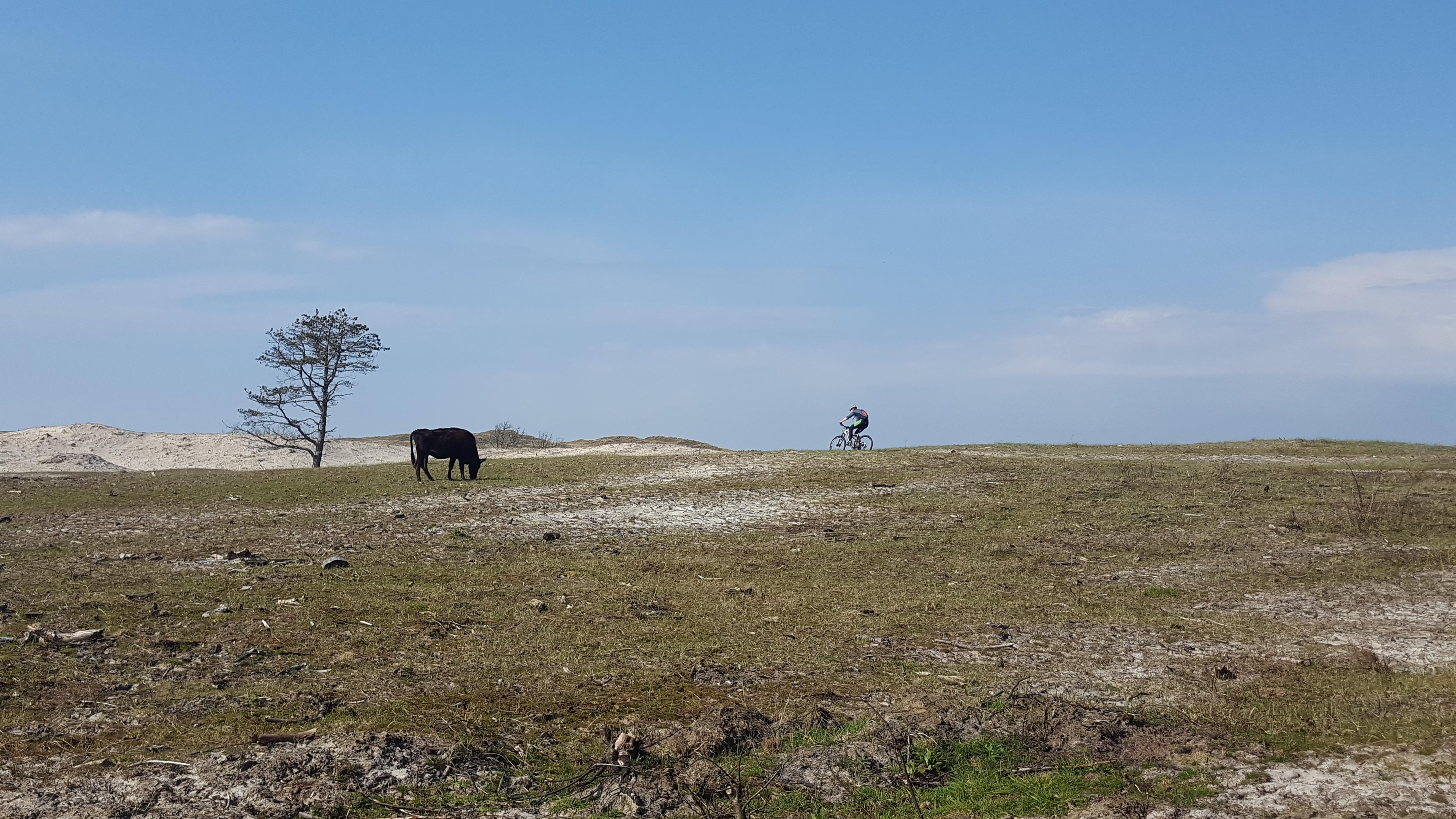 Mountainbikeroute Schoorl