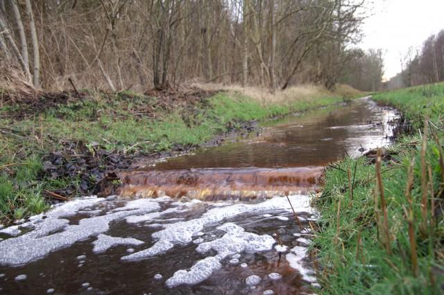 Duinrel de Tureluur in De Dennen. Een drempel en verhoogde slootbodem laten meer water de bodem inzakken, het te veel kan wel wegstromen.