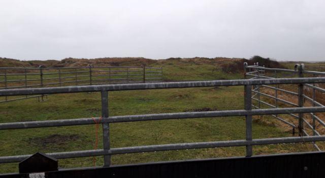 vangkraal Texel