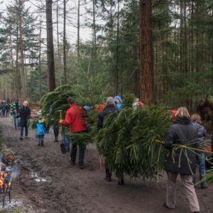 Kerstbomenverkoop in Vuursche